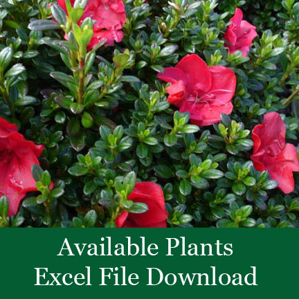 available-plants